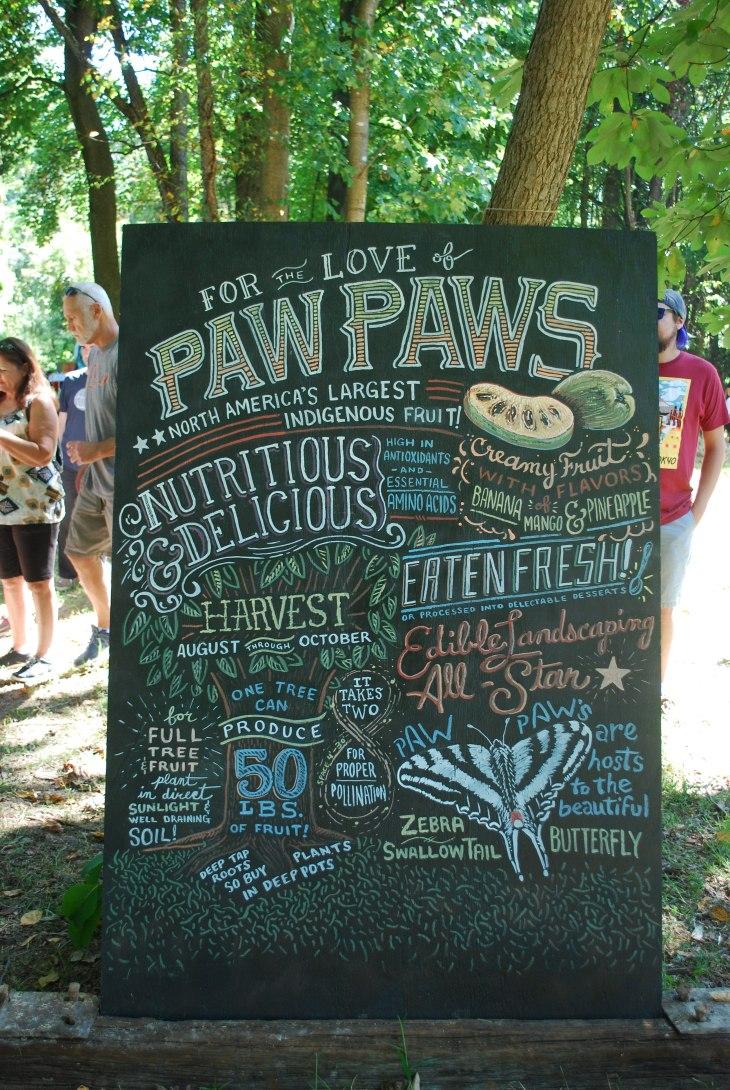 frederick maryland paw paw fruit festival